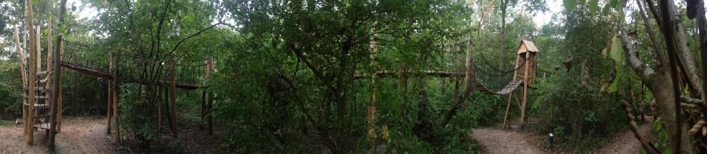 Houten ontdekkingspad tussen de bomen